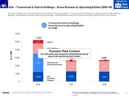 AXA Transversal And Central Holdings Gross Revenue By Operating Entities 2016-18