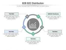 B2B B2C Distribution Ppt Powerpoint Presentation Summary Sample Cpb