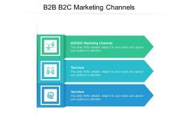 B2B B2C Marketing Channels Ppt Powerpoint Presentation Professional Topics Cpb