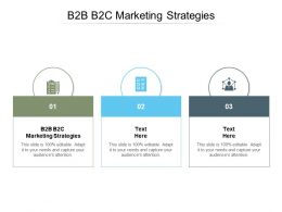 B2B B2C Marketing Strategies Ppt Powerpoint Presentation Pictures Slides Cpb