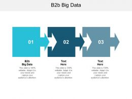 B2B Big Data Ppt Powerpoint Presentation File Graphics Example Cpb