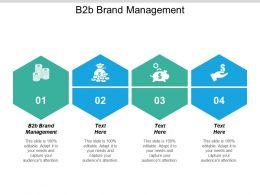 B2b Brand Management Ppt Powerpoint Presentation Gallery Structure Cpb