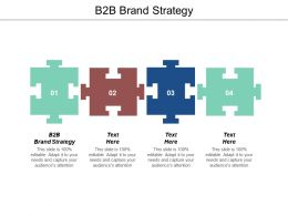 B2b Brand Strategy Ppt Powerpoint Presentation Icon Background Image Cpb