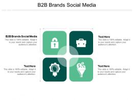 B2B Brands Social Media Ppt Powerpoint Presentation Portfolio Graphics Template Cpb