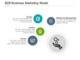 B2B Business Marketing Model Ppt Powerpoint Presentation File Show Cpb