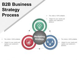 B2b Business Strategy Process Example Of Ppt