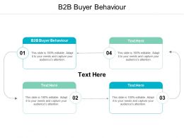 B2B Buyer Behaviour Ppt Powerpoint Presentation File Styles Cpb
