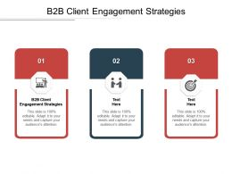 B2B Client Engagement Strategies Ppt Powerpoint Presentation File Background Image Cpb