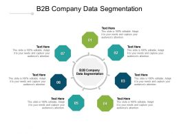 B2B Company Data Segmentation Ppt Powerpoint Presentation Outline Layout Cpb