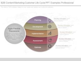 B2b Content Marketing Customer Life Cycle Ppt Examples Professional