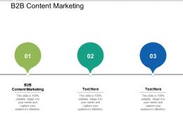 B2B Content Marketing Ppt Powerpoint Presentation Gallery Format Cpb