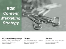 B2B Content Marketing Strategy Ppt Powerpoint Presentation Gallery Graphics Template Cpb