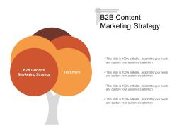 B2b Content Marketing Strategy Ppt Powerpoint Presentation Model Visuals Cpb