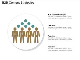 B2b Content Strategies Ppt Powerpoint Presentation File Graphics Download Cpb