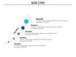 B2b Crm Ppt Powerpoint Presentation Infographic Template Smartart Cpb