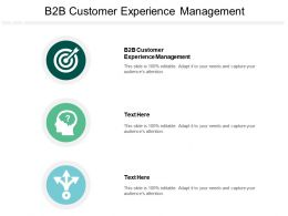 B2B Customer Experience Management Ppt Powerpoint Presentation Gallery Slideshow Cpb