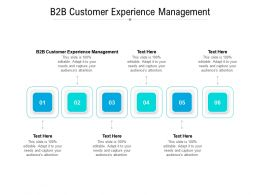 B2B Customer Experience Management Ppt Powerpoint Presentation Model Maker Cpb