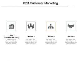 B2B Customer Marketing Ppt Powerpoint Presentation File Summary Cpb