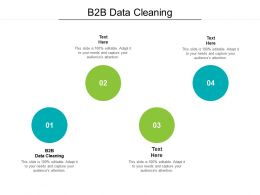 B2B Data Cleaning Ppt Powerpoint Presentation Portfolio Inspiration Cpb