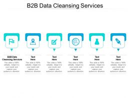 B2B Data Cleansing Services Ppt Powerpoint Presentation Professional Graphics Example Cpb