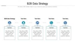 B2B Data Strategy Ppt Powerpoint Presentation Professional Graphics Template Cpb