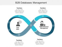B2b Databases Management Ppt Powerpoint Presentation File Model Cpb