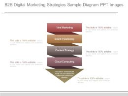 B2b Digital Marketing Strategies Sample Diagram Ppt Images