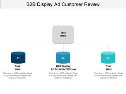 B2B Display Ad Customer Review Ppt Powerpoint Presentation Infographics Background Cpb