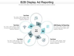 B2B Display Ad Reporting Ppt Powerpoint Presentation Inspiration Styles Cpb