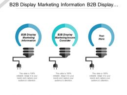 B2b Display Marketing Information B2b Display Marketing Issues Consider Cpb
