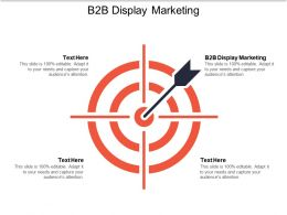 B2b Display Marketing Ppt Powerpoint Presentation File Pictures Cpb