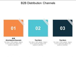 B2B Distribution Channels Ppt Powerpoint Presentation Icon Samples Cpb