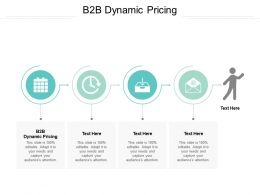 B2B Dynamic Pricing Ppt Powerpoint Presentation File Sample Cpb