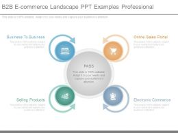 B2b E Commerce Landscape Ppt Examples Professional