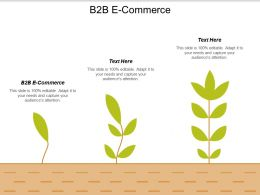 B2B E Commerce Ppt Powerpoint Presentation Gallery Graphics Tutorials Cpb