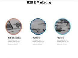 B2B E Marketing Ppt Powerpoint Presentation File Format Cpb