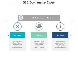 B2b Ecommerce Expert Ppt Powerpoint Presentation File Format Cpb