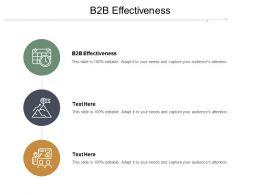 B2B Effectiveness Ppt Powerpoint Presentation File Visuals Cpb