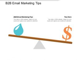 B2B Email Marketing Tips Ppt Powerpoint Presentation Slides Guidelines Cpb