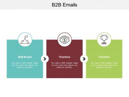 B2B Emails Ppt Powerpoint Presentation File Slide Download Cpb