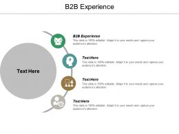 B2B Experience Ppt Powerpoint Presentation Icon Layout Ideas Cpb