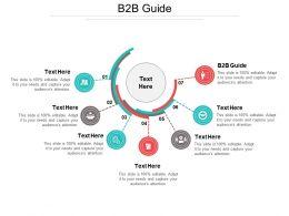 B2b Guide Ppt Powerpoint Presentation File Portfolio Cpb