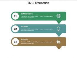 B2B Information Ppt Powerpoint Presentation Icon Slide Portrait Cpb