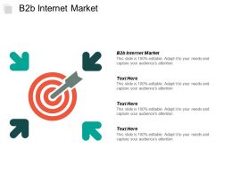 B2b Internet Market Ppt Powerpoint Presentation Pictures Graphics Cpb