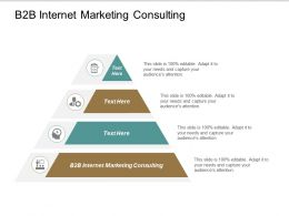 B2B Internet Marketing Consulting Ppt Powerpoint Presentation File Model Cpb
