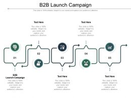 B2B Launch Campaign Ppt Powerpoint Presentation Professional Cpb