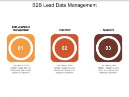 B2B Lead Data Management Ppt Powerpoint Presentation File Design Ideas Cpb