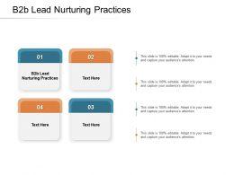 B2B Lead Nurturing Practices Ppt Powerpoint Presentation Infographics Slide Download Cpb