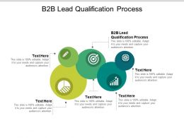 B2B Lead Qualification Process Ppt Powerpoint Presentation Ideas Design Templates Cpb