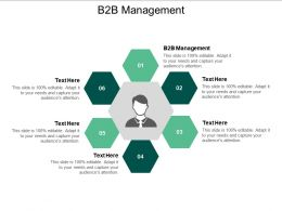 B2B Management Ppt Powerpoint Presentation Model Outline Cpb